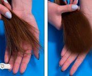 علاج تقصف الشعر بالوصفات الطبيعية وأسبابه جفافه