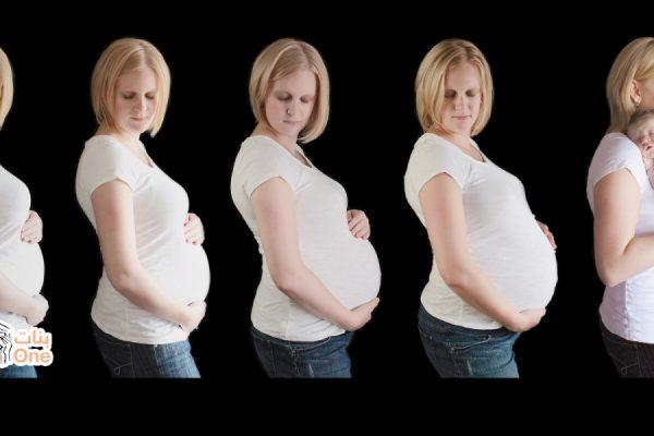 اسابيع الحمل بالتفصيل