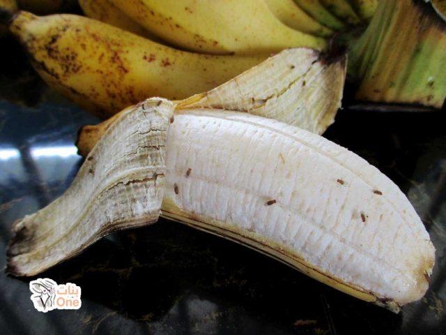 طرق التخلص من ذباب الفاكهة