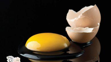 فوائد قشر البيض الصحية