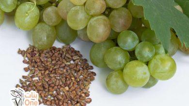 فوائد بذور العنب العديدة في العلاجات الصحية والنفسية