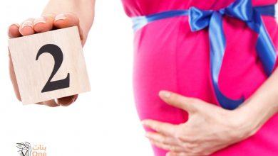 مكان الجنين في الشهر الثاني في البطن