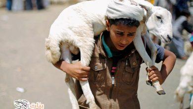 موعد عيد الأضحى 2020 في مصر
