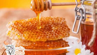 فوائد غذاء ملكات النحل للجسم وللنساء
