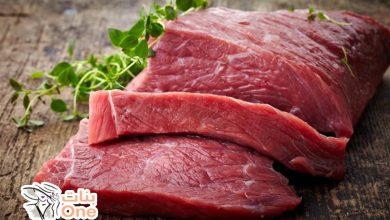 ما هي فوائد لحم الجمل