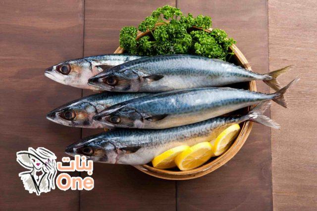 فوائد وأضرار سمك الماكريل