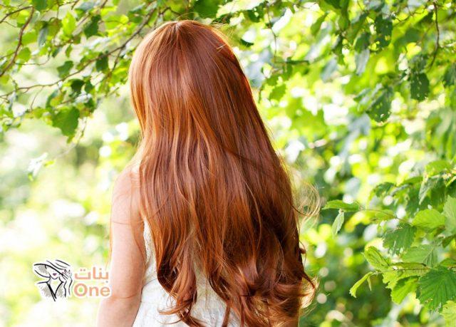 كيفية تقوية الشعر وتطويله في المنزل