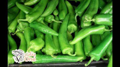 فوائد الشطة الخضراء على صحة الجسم والجهاز الهضمي