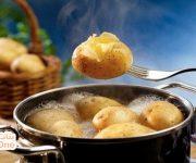 كيف نسلق البطاطس بسرعة