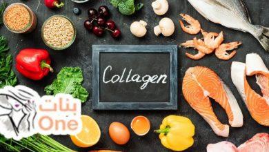 أفضل 7 أطعمة تحتوي على الكولاجين