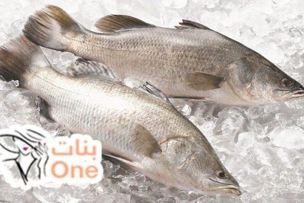 ما هي فوائد سمك القاروص