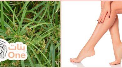 فوائد نبات السعد لإزالة الشعر الزائد