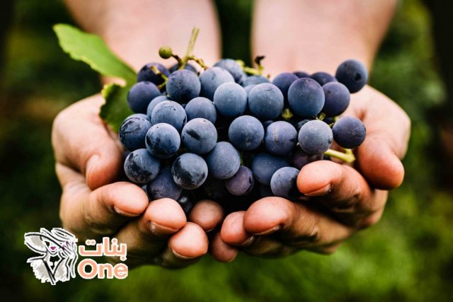 فوائد العنب الأسود للبشرة