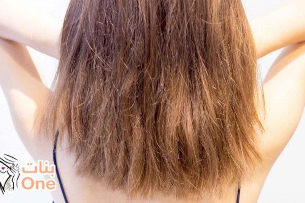 طريقة معالجة الشعر الجاف بالخطوات
